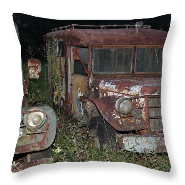 Old Friends Throw Pillow by Joseph G Holland