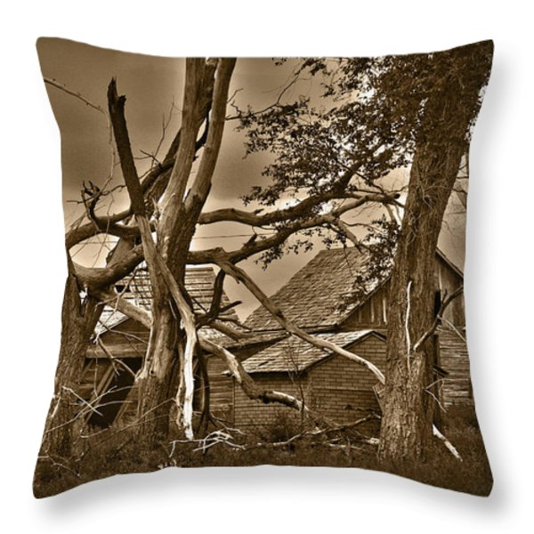 Old Homestead Throw Pillow by Shane Bechler