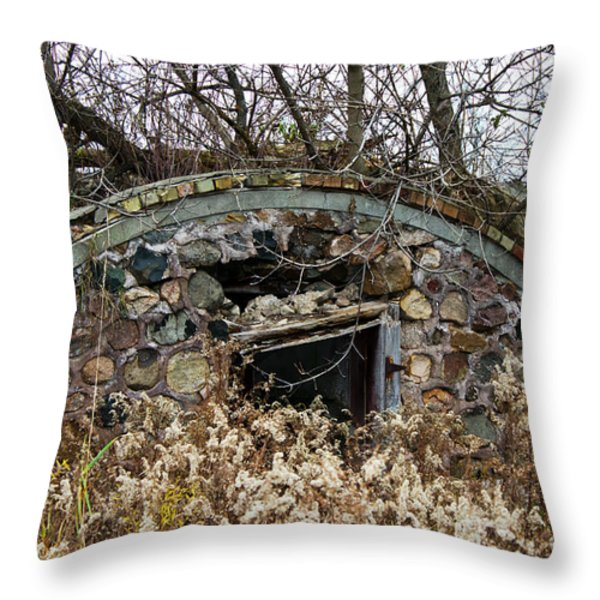Old Ice House Throw Pillow by Ms Judi