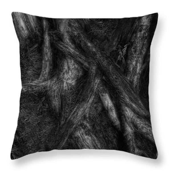 Old Silvery Roots Throw Pillow by David Gordon