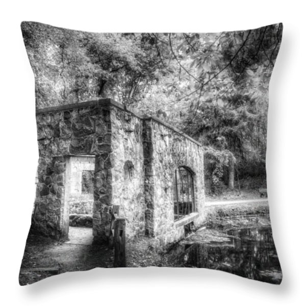 Old Spring House Throw Pillow by Scott Norris