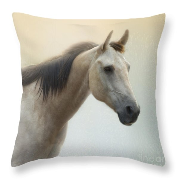 On A Summer Day Throw Pillow by Betty LaRue