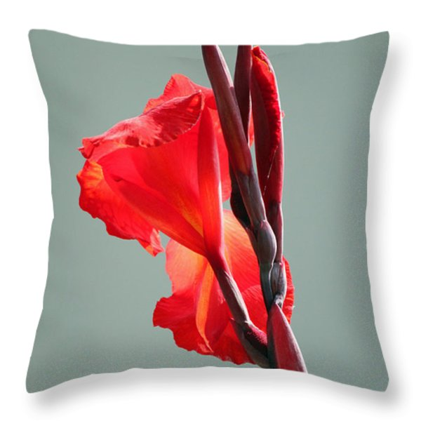 On Fire Throw Pillow by Suzanne Gaff