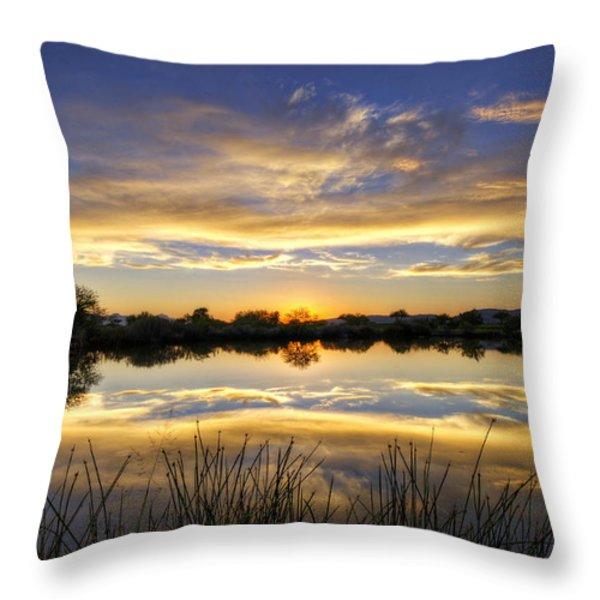 On Golden Shores  Throw Pillow by Saija  Lehtonen