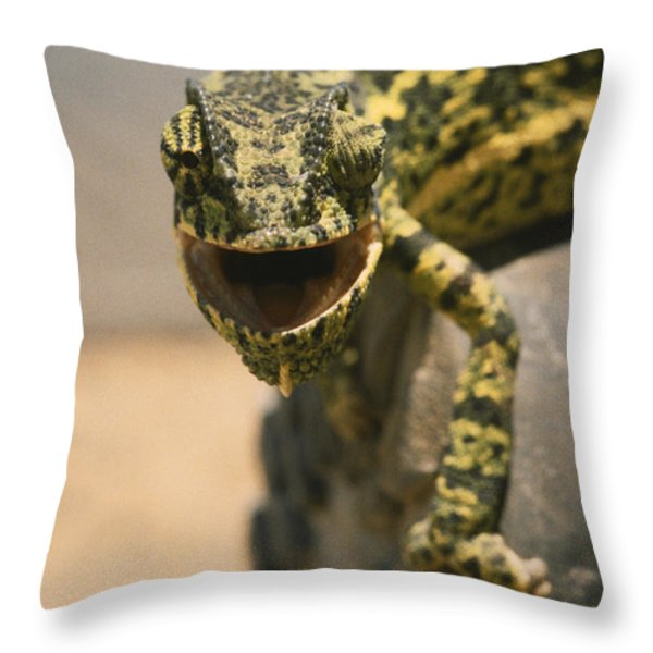On The Heel Of A Boot A Flap-necked Throw Pillow by Jason Edwards