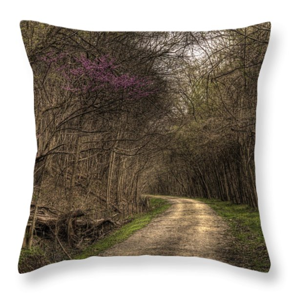 On This Trail Throw Pillow by William Fields