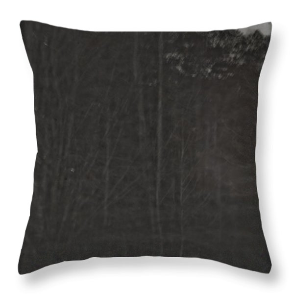 Once Upon A Dream Throw Pillow by Kim Henderson