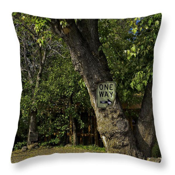 One Way Throw Pillow by Madeline Ellis