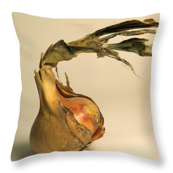 Onion Throw Pillow by Bernard Jaubert