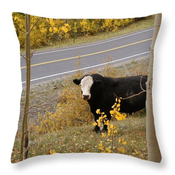 Oooops Wrong Trail Throw Pillow by Ernie Echols
