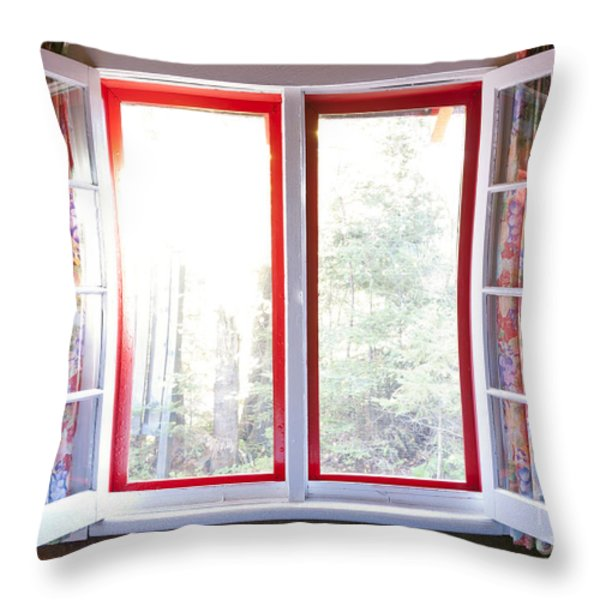 Open window in cottage Throw Pillow by Elena Elisseeva