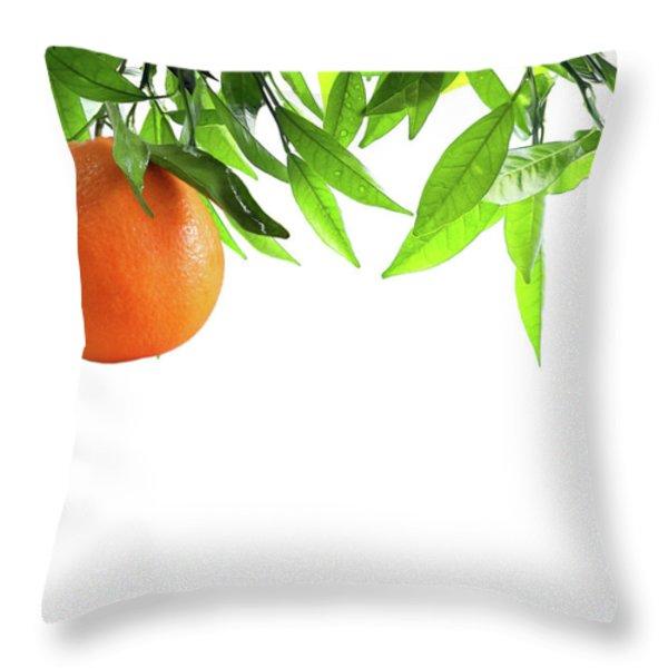Orange Branch Throw Pillow by Carlos Caetano