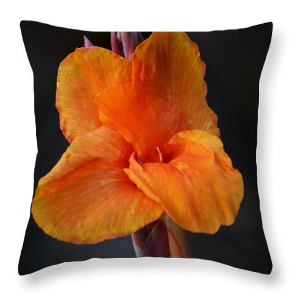 Orange Canna Lily Throw Pillow by Melanie Moraga