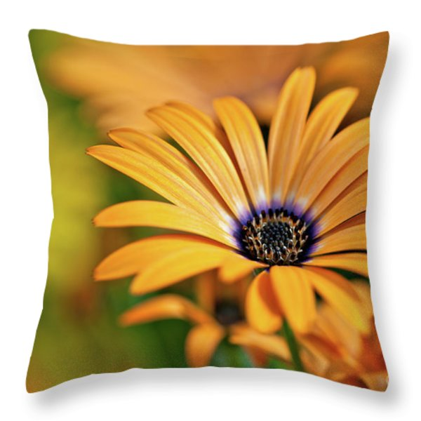 Orange Crush Throw Pillow by Charles Dobbs