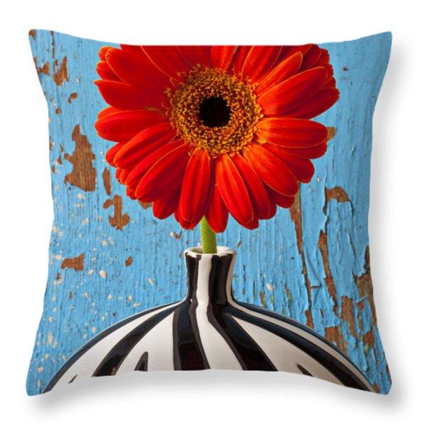 Orange Gerbera Mum Throw Pillow by Garry Gay