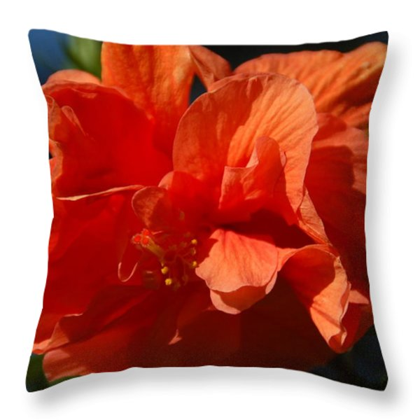 Orange Hibiscus Throw Pillow by Aimee L Maher Photography and Art
