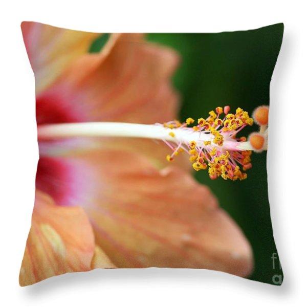 Orange Hibiscus Throw Pillow by Sabrina L Ryan