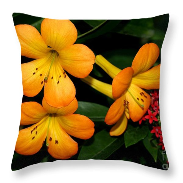 Orange Rhododendron Flowers Throw Pillow by Sabrina L Ryan