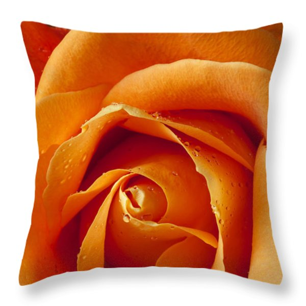 Orange Rose Close Up Throw Pillow by Garry Gay