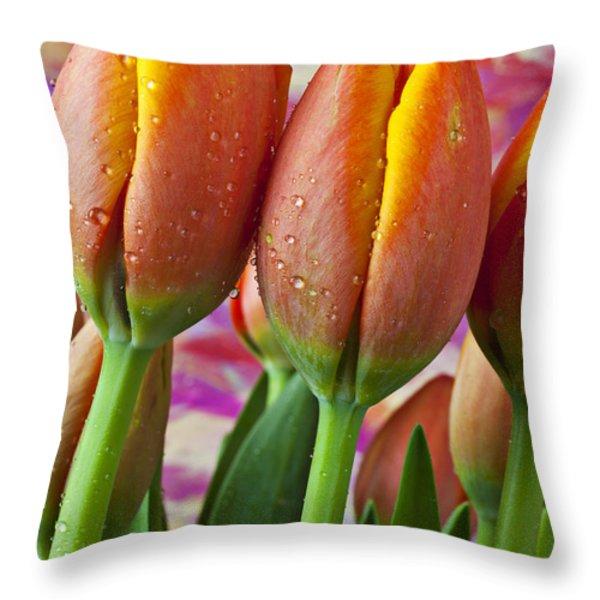 Orange Yellow Tulips Throw Pillow by Garry Gay