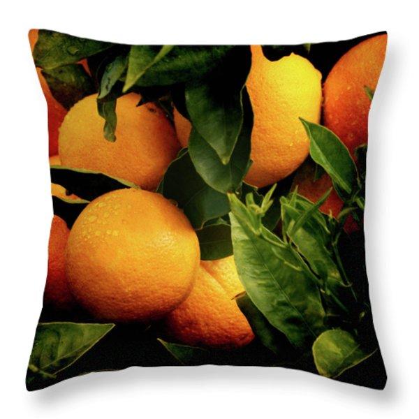 Oranges Throw Pillow by Ernie Echols
