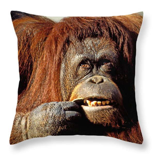 Orangutan  Throw Pillow by Garry Gay