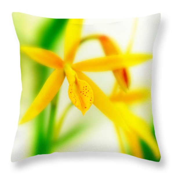 Orchid Vi Throw Pillow by Floyd Menezes