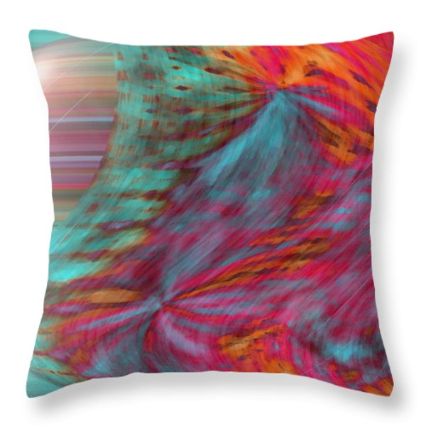 Order Of The Universe Throw Pillow by Linda Sannuti