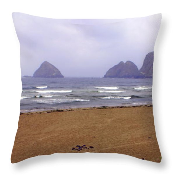 Oregon Coast 1 Throw Pillow by Marty Koch