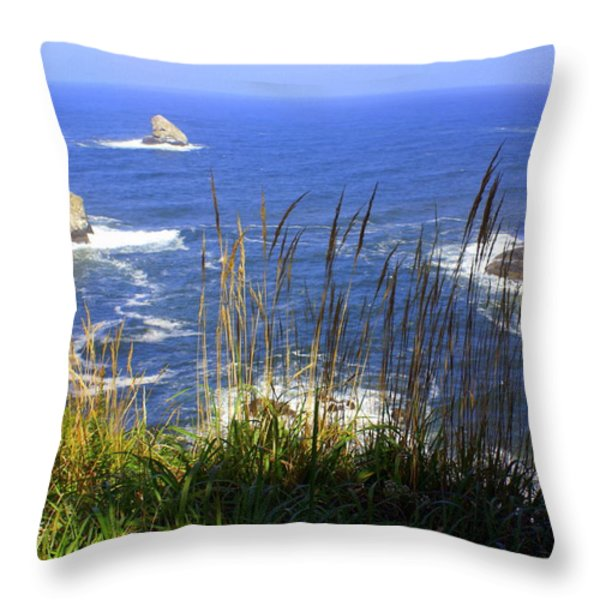 Oregon Coast 4 Throw Pillow by Marty Koch