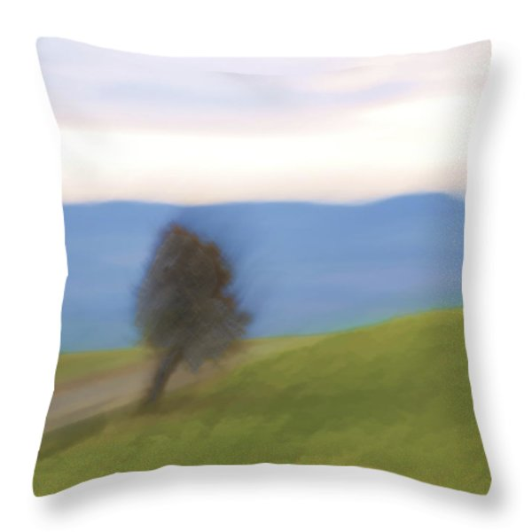 Oregon Country Road Throw Pillow by Carol Leigh