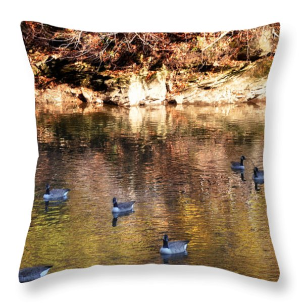 Out for a Swim Throw Pillow by Bill Cannon