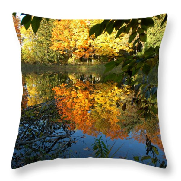 Out of the Woods Throw Pillow by LeeAnn McLaneGoetz McLaneGoetzStudioLLCcom