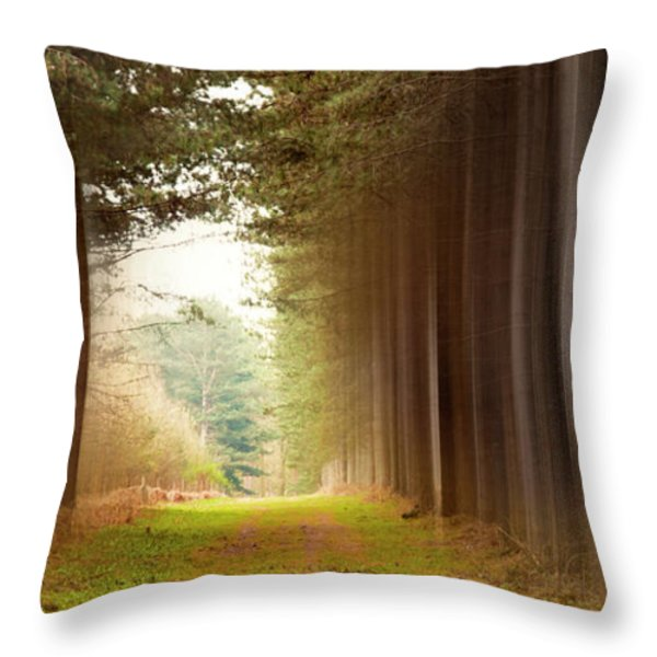 Out Of Woods Throw Pillow by Svetlana Sewell
