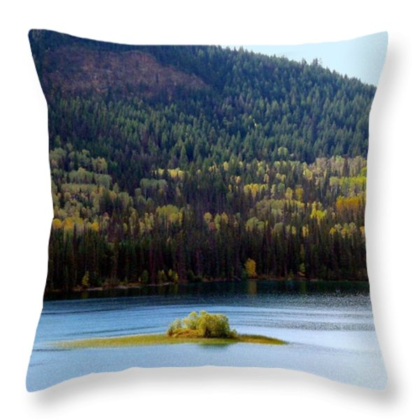 Outlook 18 Throw Pillow by Will Borden