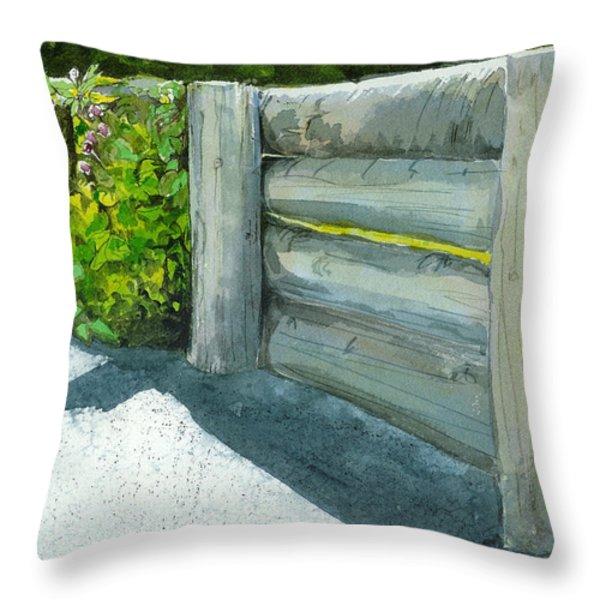 Overcoming The Wall Throw Pillow by Lynn Babineau