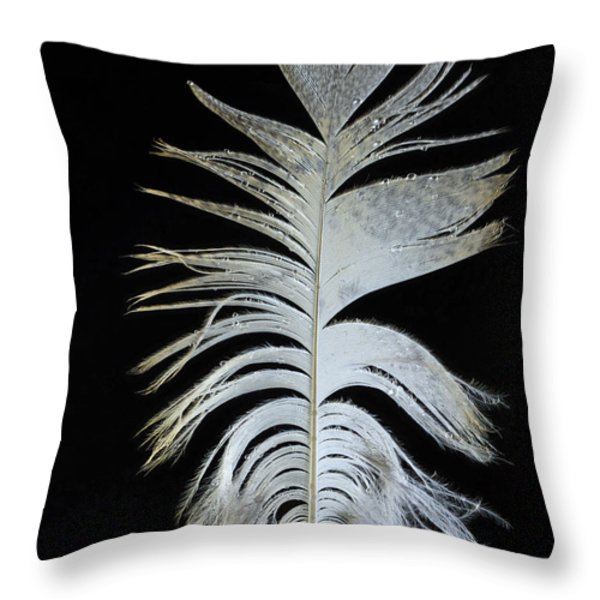 Owl Clothes Throw Pillow by Jean Noren