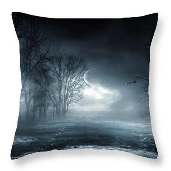 Owl of Minerva Throw Pillow by Lourry Legarde