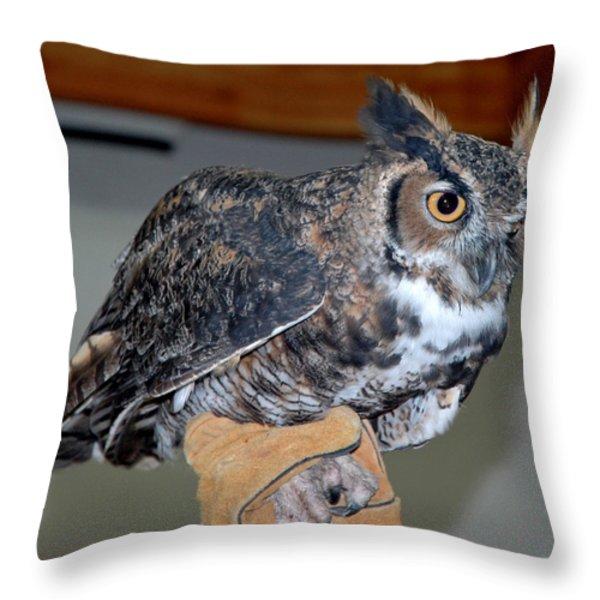 Owl together now Throw Pillow by LeeAnn McLaneGoetz McLaneGoetzStudioLLCcom