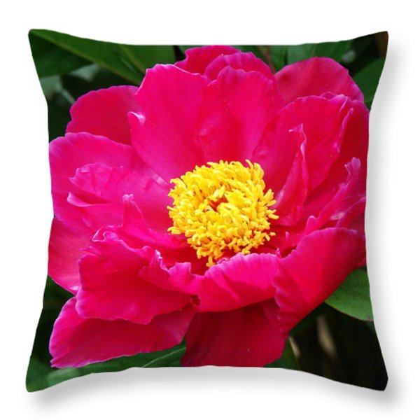 Paeony Throw Pillow by Nicola Butt