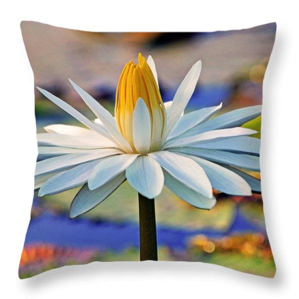 Painted By The Sun Throw Pillow by Melanie Moraga