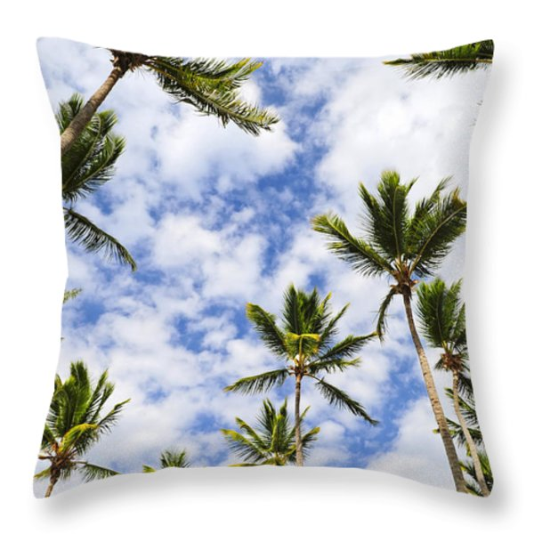 Palm trees Throw Pillow by Elena Elisseeva