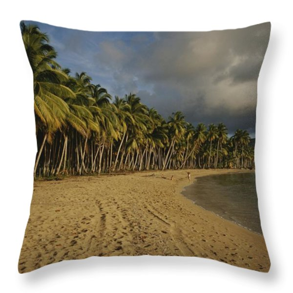 Palm Trees Line A Dominican Republic Throw Pillow by Raul Touzon