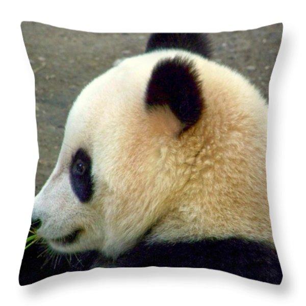 Panda Snack Throw Pillow by Karen Wiles