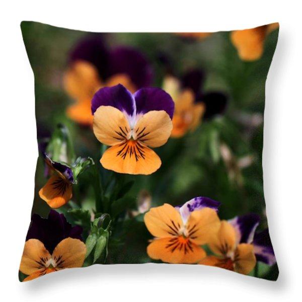 Pansy Garden Throw Pillow by Sabrina L Ryan
