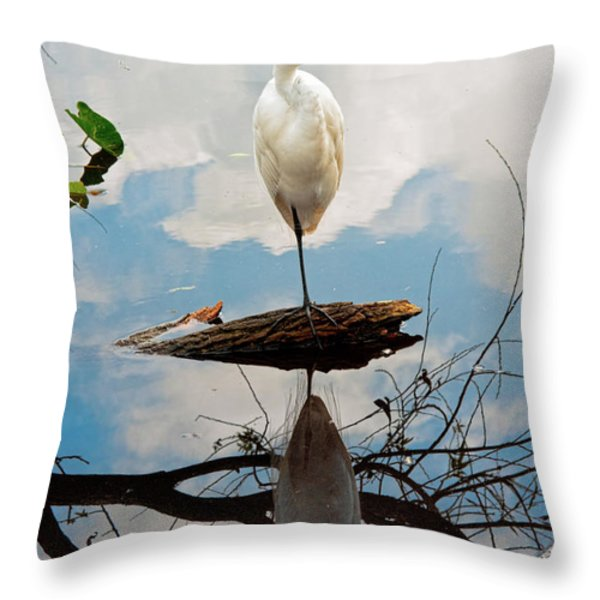 Parallel Worlds Throw Pillow by Christopher Holmes