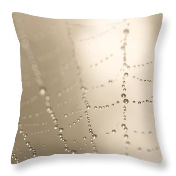 Part Of A Spider Web Shows Throw Pillow by Phil Schermeister
