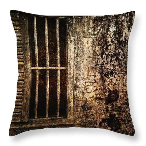 Partly Open Throw Pillow by Skip Nall