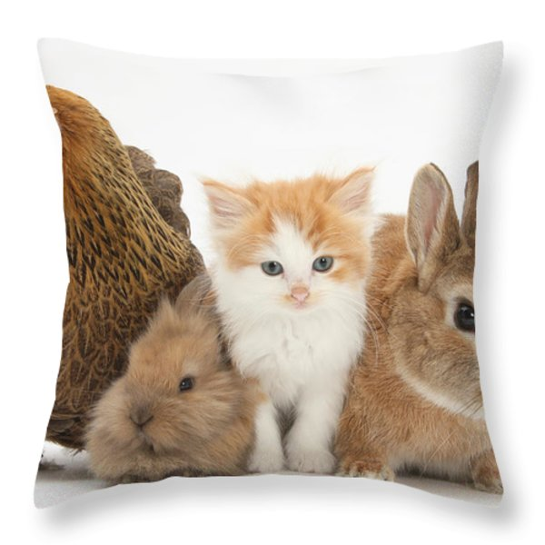 Partridge Pekin Bantam With Kitten Throw Pillow by Mark Taylor