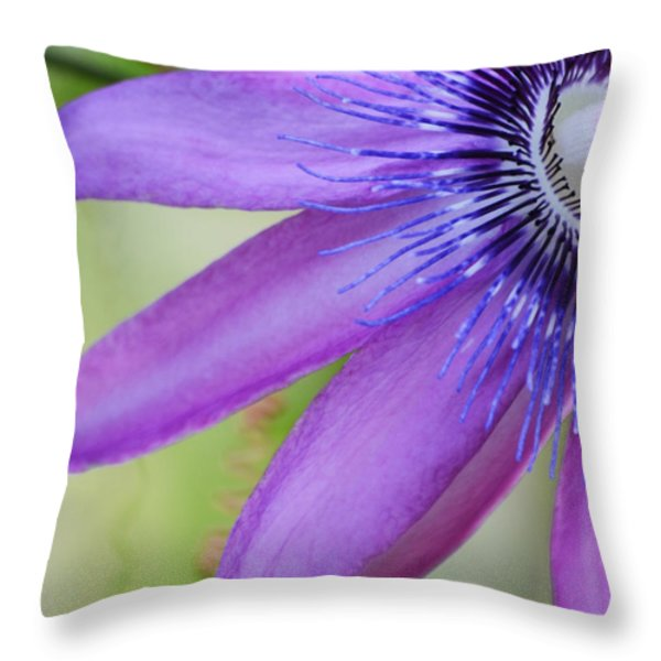 Passiflora Caerulea Throw Pillow by Melanie Moraga